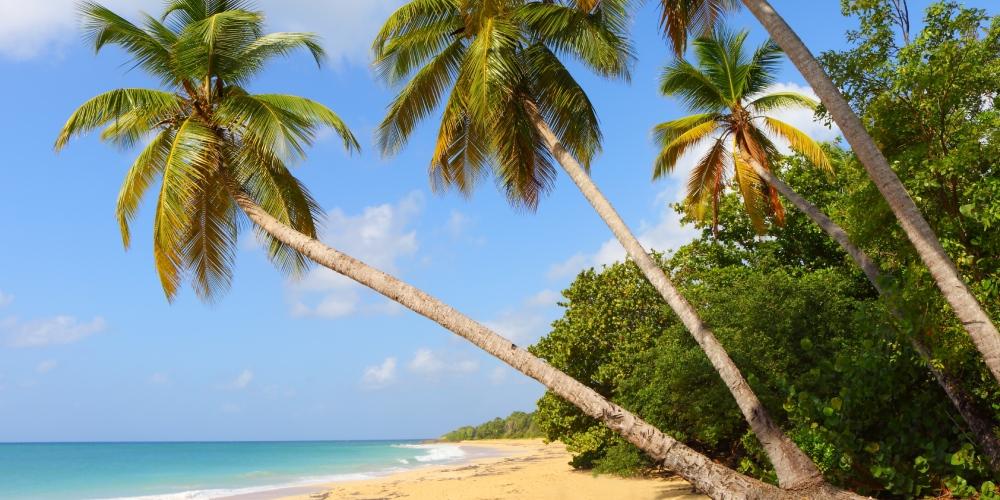martinique-visite-hors-saison-mai-plage-les-salines