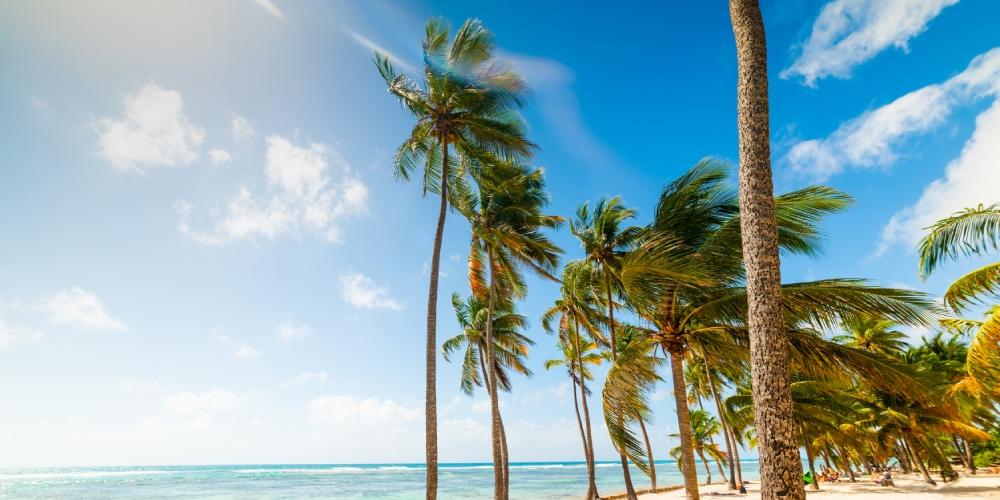 itineraire guadeloupe plage bois jolan