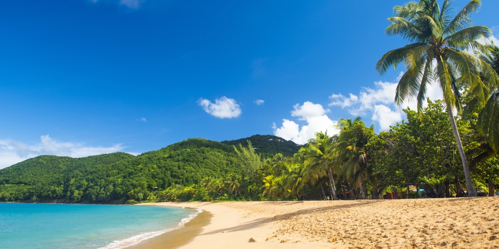 plages guadeloupe grande anse