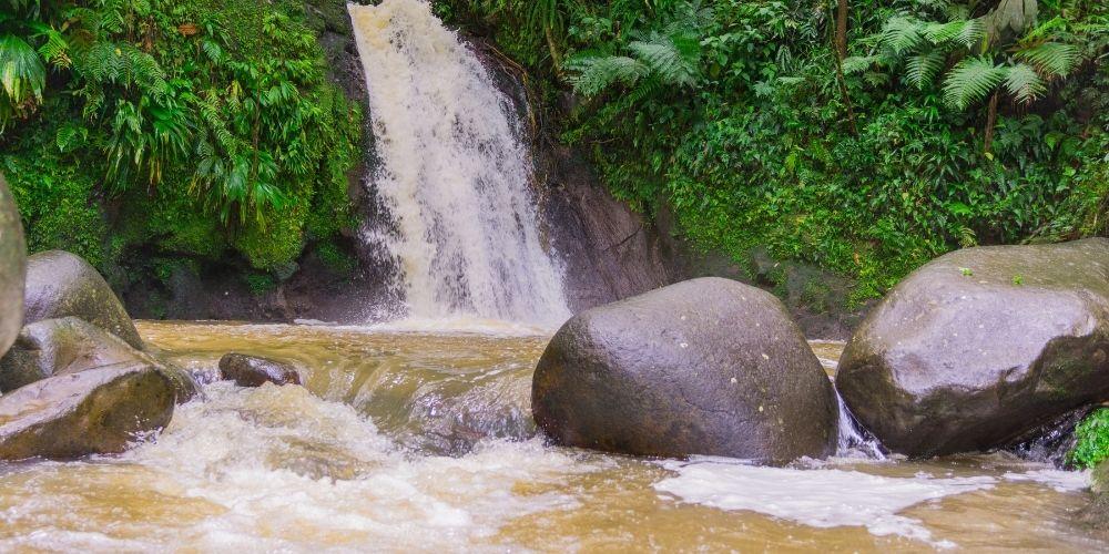 Parc national de la guadeloupe cascade ecrevisses