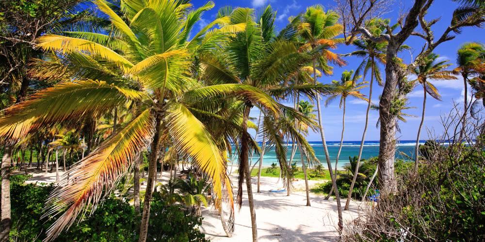 vacances-martinique-famille-plage-anse-michel