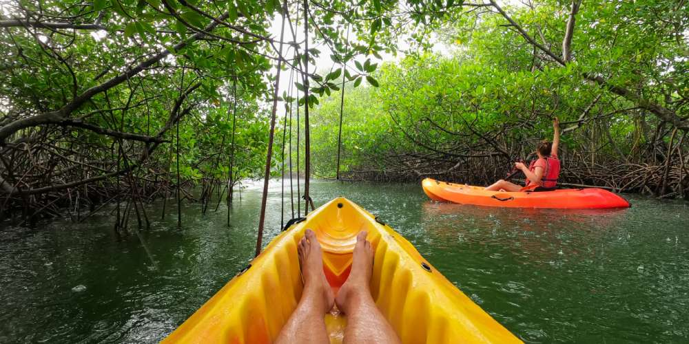 vacances-martinique-famille-mangrove-kayak